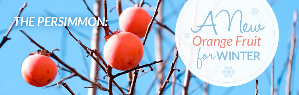 The Persimmon: A New Orange Fruit for Winter